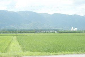 農地転用における市街化区域や農振除外の対象地
