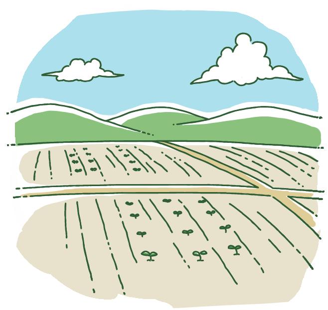 農地転用の種類について